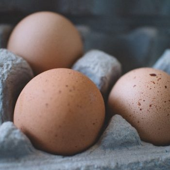 Dioxins in Eggs