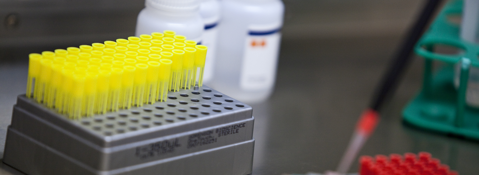 VelaLabs' analytical services portfolio for clinical studies